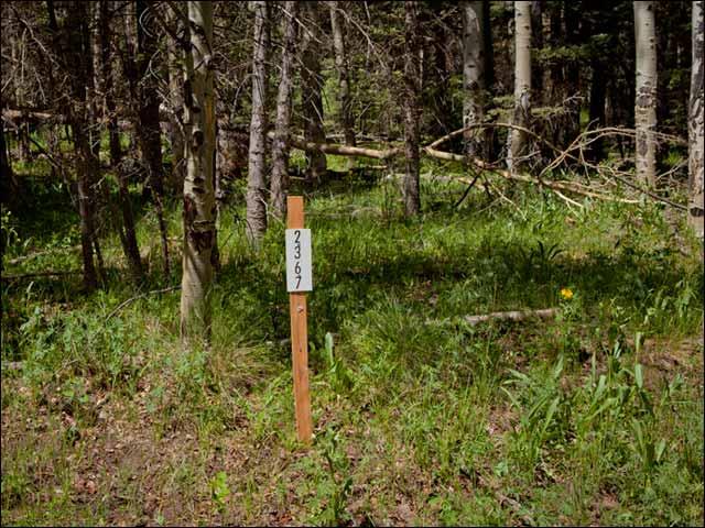 Colorado Land, 1.80 Acres