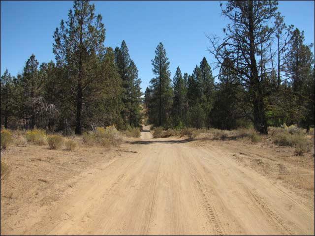 5.0 Acres of Cheap Oregon Land