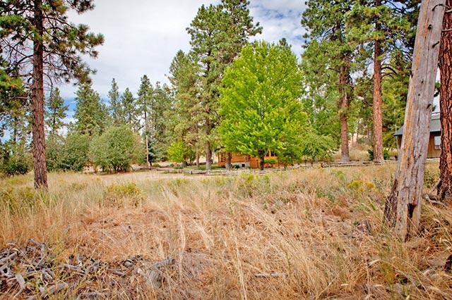 .25 Acres of Oregon Land