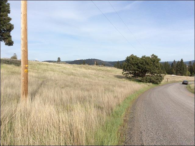 .94 Acres Oregon Land
