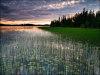 4.30 Acres of Alaska Land