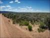 Cheap Colorado Land for Sale, 5.0 Acres