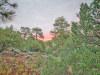 Colorado Land for Sale, 5.0 Acres