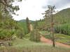 0.97 Acres Colorado Land