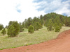 Colorado Land for Sale, 0.96 Acres