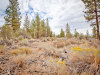 2.3 Acres Oregon Land