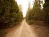 2.3 Acres Oregon Land