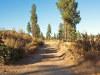 Oregon Land for Sale, 2.40 Acres