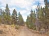 Oregon Land, 2.30 Acres