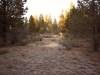 Oregon Land for Sale, 2.30 Acres
