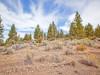 1.9 Acres Oregon Land