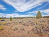 9.50 Acres, Cheap Oregon Land for Sale