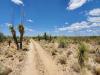1.12 Acres Arizona Land