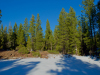 1.95 Acres of Cheap California Land