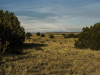35.24 Acres of Land for Sale in Colorado