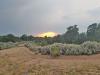 5.0 Acres, Cheap Colorado Land for Sale