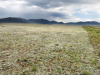 5.07 Acres of Colorado Land for Sale