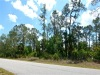 .25 Acres of Florida Land for Sale