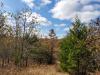 Missouri Land for Sale, 6.33 Acres