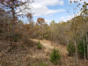 12 Acres of Missouri Land for Sale