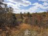 15 Acres Missouri Land