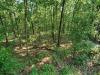 1.9 Acres Missouri Land