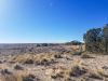 1 Acre New Mexico Land