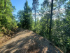 3.7 Acres North Carolina Land