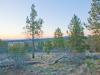 2.80 Acres of Oregon Land