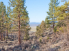 1.60 Acres, Oregon Land for Sale