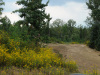 15 Acres Tennessee Land