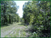 3.15 Acres of Cheap Missouri Land for Sale