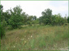 2.39 Acres, Cheap Missouri Land for Sale