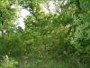 Missouri Land, 2.20 Acres