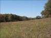 Cheap Missouri Land for Sale, 2.38 Acres