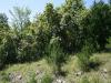 Missouri Land for Sale, 2.52 Acres