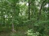 5.80 Acres, Cheap Missouri Land for Sale