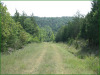 5.18 Acres of Cheap Missouri Land