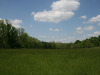 4.10 Acres of Missouri Land