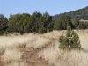 2.27 Acres of Cheap Arizona Land