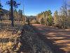 1.53 Acres of Colorado Land