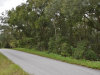 0.50 Acres of Florida Land