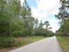 1.0 Acre of Florida Land
