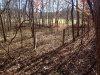Missouri Land for Sale, 4.30 Acres