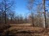 3.20 Acres of Missouri Land