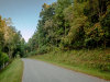 1.31 Acres North Carolina Land