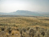 20 Acres Washington Land