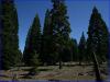 .92 Acres California Land