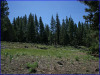 .99 Acres California Land