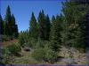 .95 Acres California Land